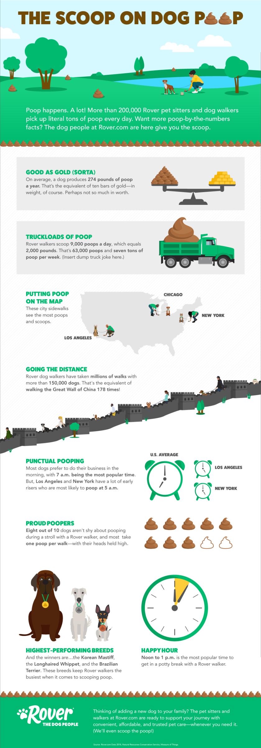 ScoopOnPoop_Infographic.png